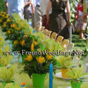 Spring Garden Wedding Reception